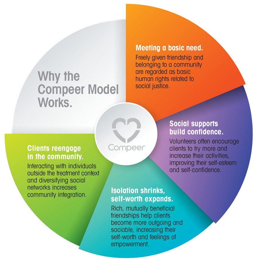Why the compeer model works